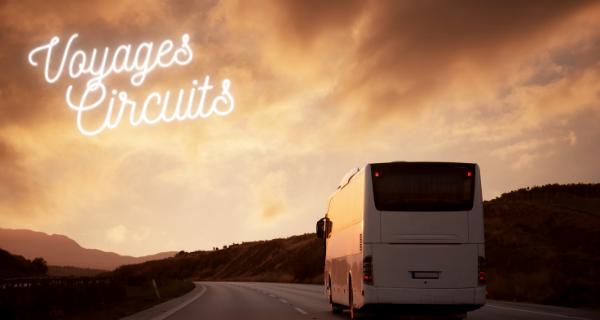 Réservation d'un minibus avec chauffeur